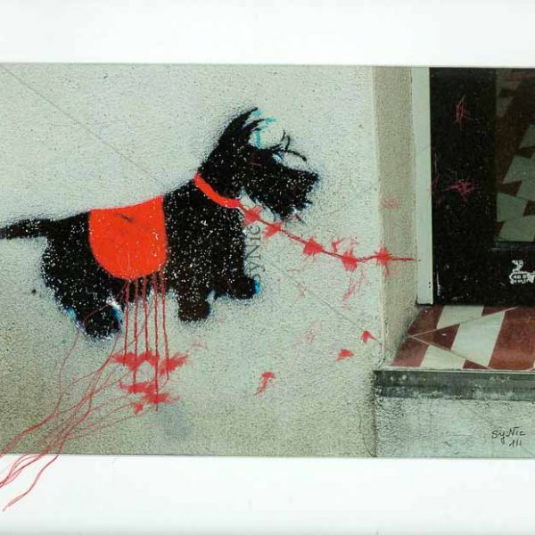 Chien rouge : Photo fil : fil rouge cousu sur photo (Paris)